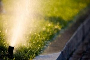 Sprinkler needs adjustment from our Dallas sprinkler repair team